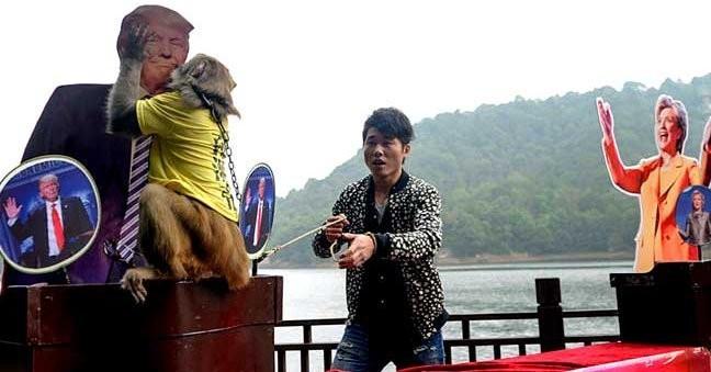 Китайская обезьяна-пророк назвала имя победителя выборов вСША