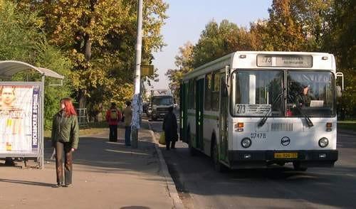 ВКузбассе шофёр Форд сбил 28-летнего пешехода