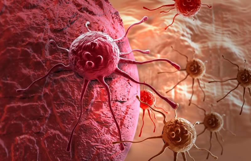 Ученые нашли причину неизлечимости рака
