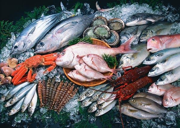 Употребление рыбы вредит иммунной системе человека— Ученые
