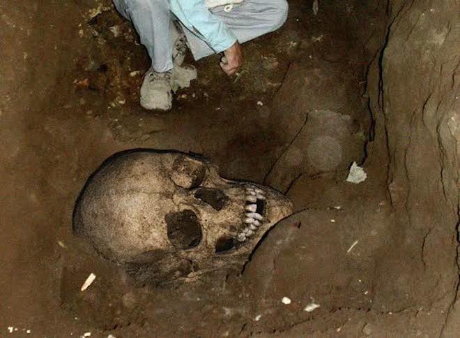 Учёным удалось раскрыть тайну погибели вXIII веке таинственной женщины-великана