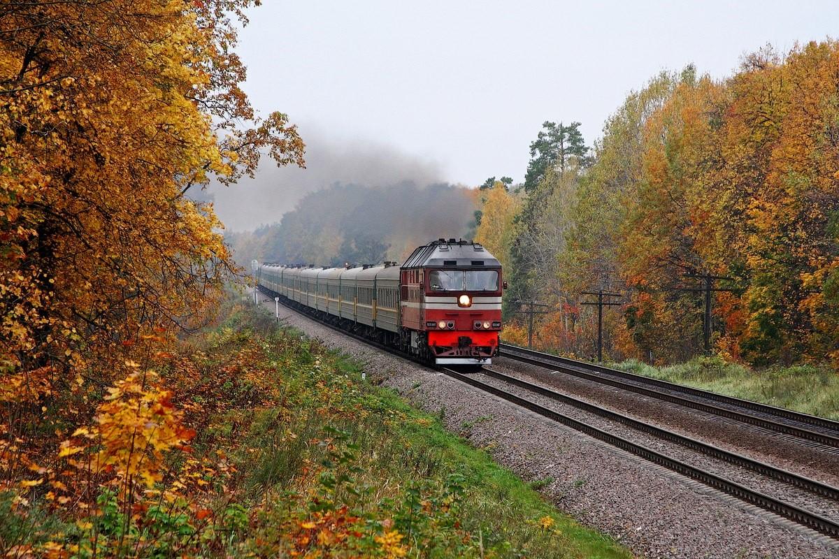 ВПодмосковье неожиданно пропали полкилометра железной дороги