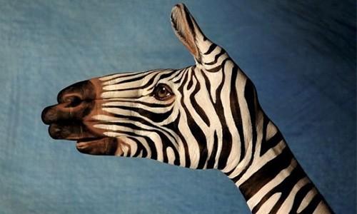 Ученые: Креатив влияет на длительность жизни людей
