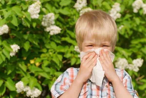 ВАвстралии из-за астмы, вызванной грозой, погибли шесть человек