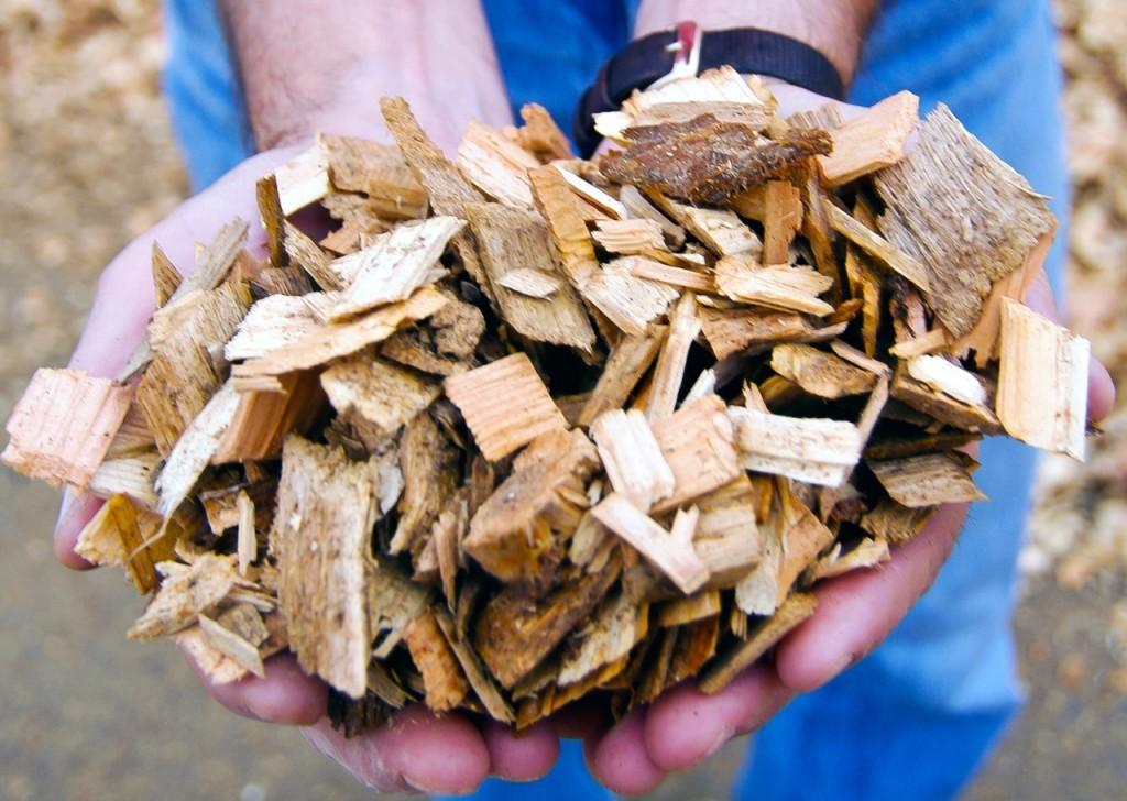 Красноярские учёные пустят вдело отходы лесопроизводства