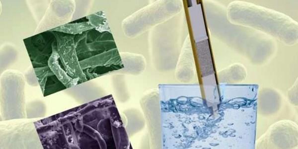 Ученые нашли «сладкий» способ очистки загрязненной воды