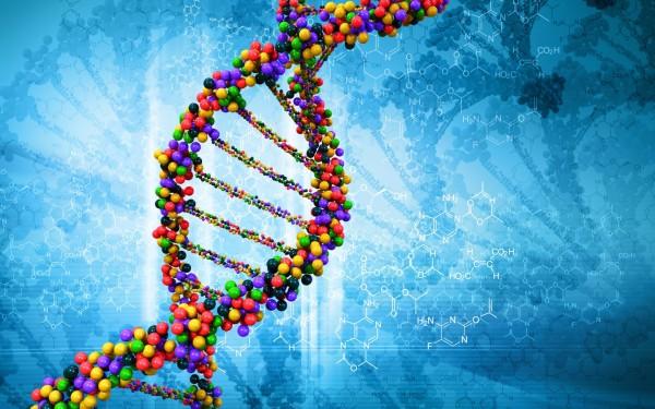 Ученые разрабатывают ДНК-вакцину против ВИЧ