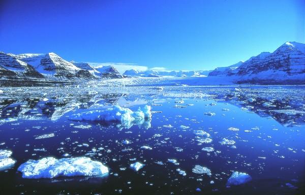 На Северном полюсе температура превысила норму на 12 градусов