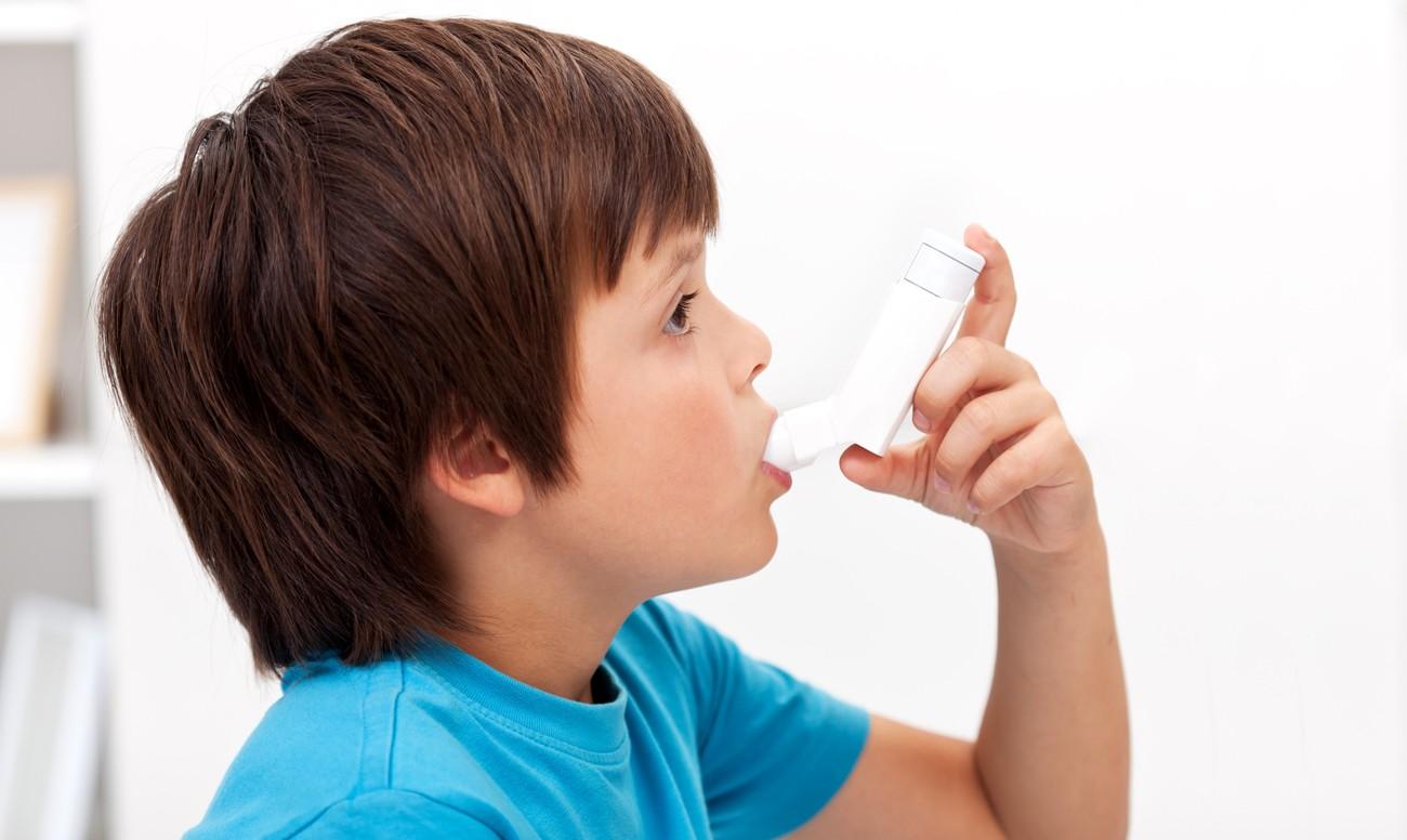 Ученые: Мыши могут вызвать приступы астмы ушкольников