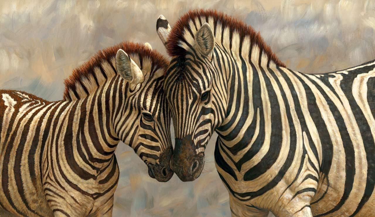 Ученые раскрыли, зачем вдействительности зебрам нужны черточки