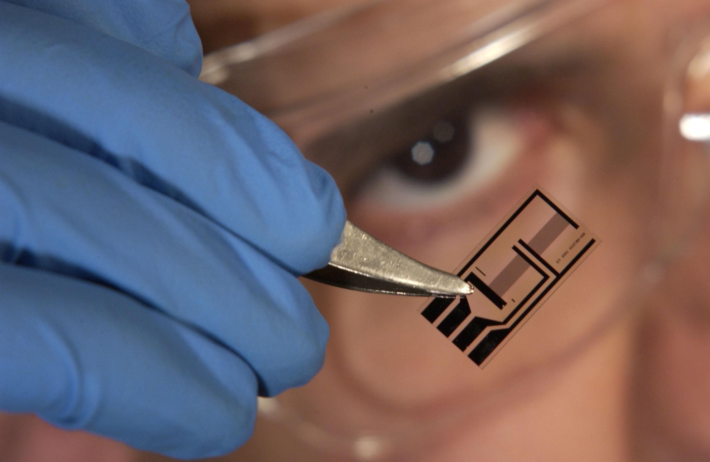 Создана нанопроволока изчастиц ДНК исеребра— Ученые