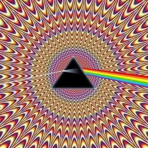 Человек видит иллюзию вместо реальности— голландские нейрофизиологи