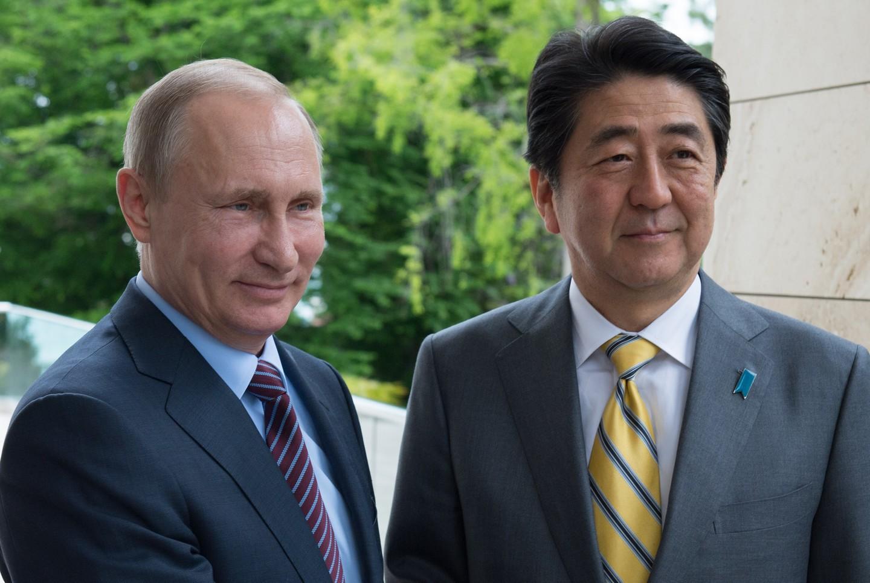 ВЯпонии появятся новые бесполётные зоны для дронов навремя визита В.Путина