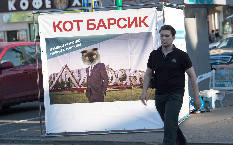 Барнаульский кот Барсик будет баллотироваться впрезиденты Российской Федерации