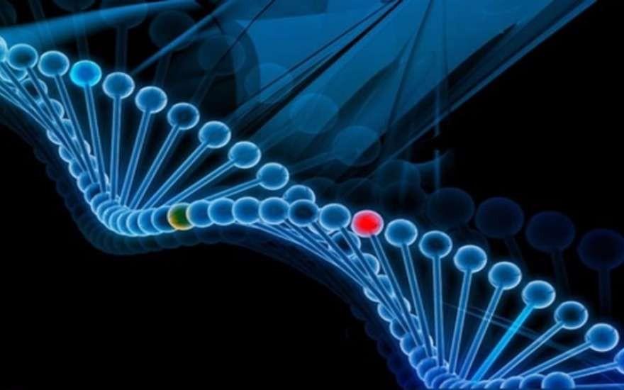 Ученые разрабатывают методику защиты генных данных человека