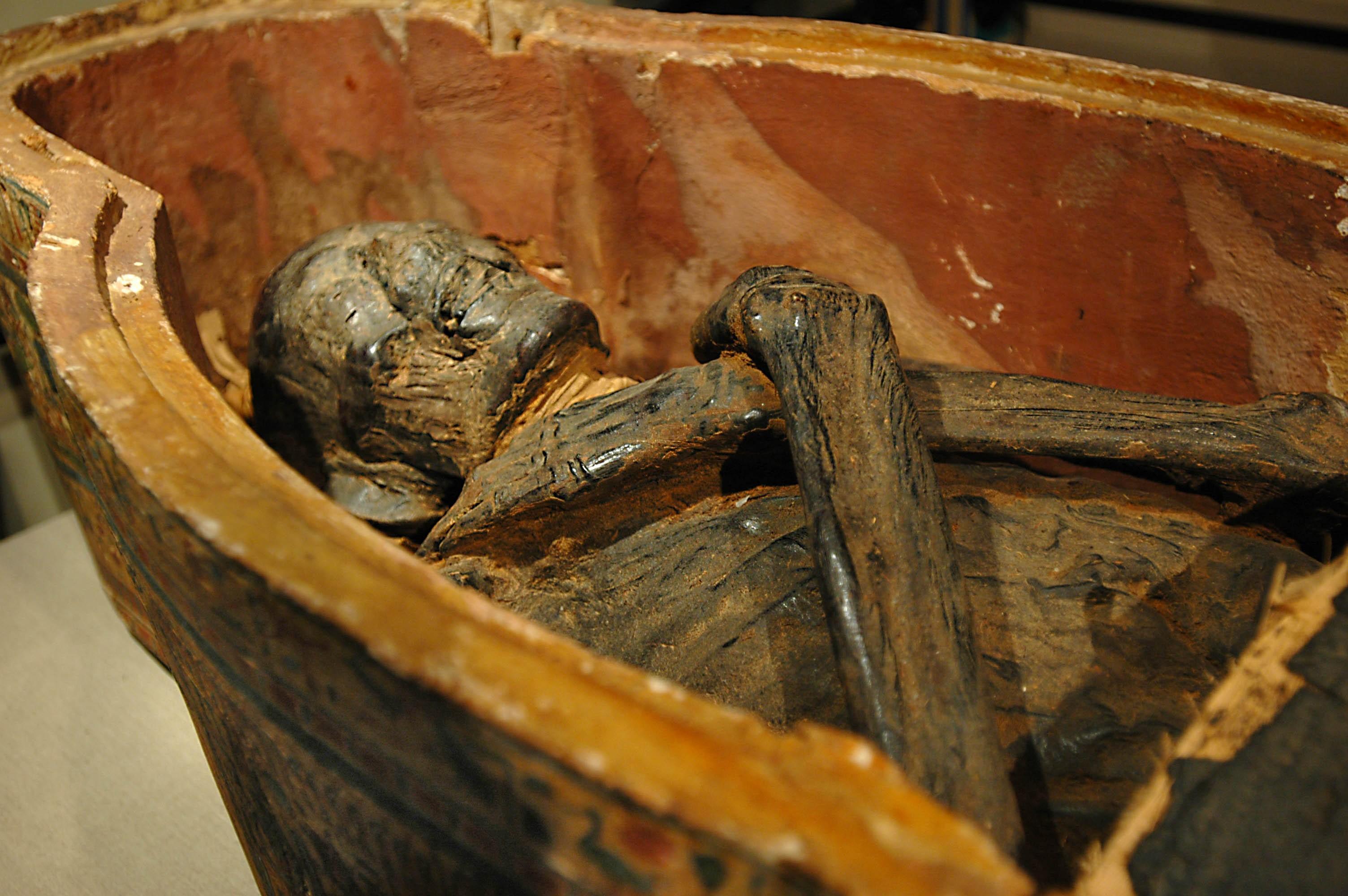 Древнейшие мумии вЧили наполняли глиной итравой