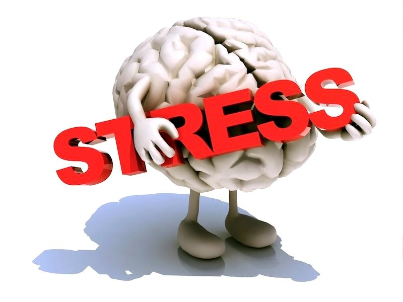 После стресса человек лучше запоминает— Ученые