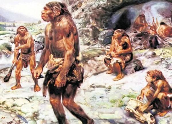 Ученые считают, что древние люди не готовили себе еду на костре