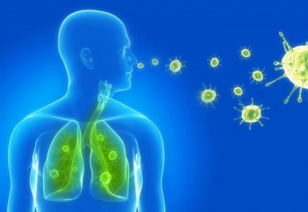Ученые: Уязвимость к вирусам имеет связь со временем суток