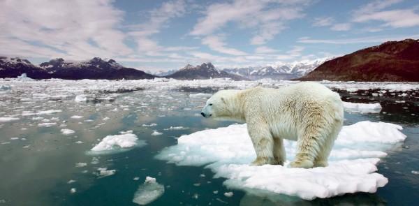 Ученые обнаружили на Северном полюсе рекордное повышение температуры