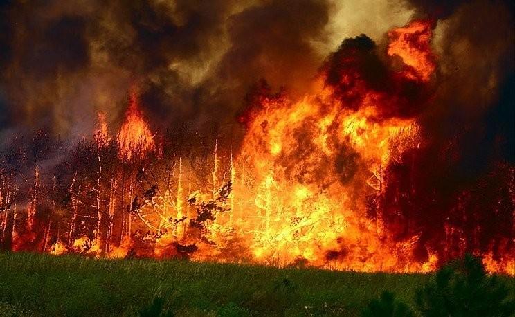 Пожар вЧили: пострадали 19 человек