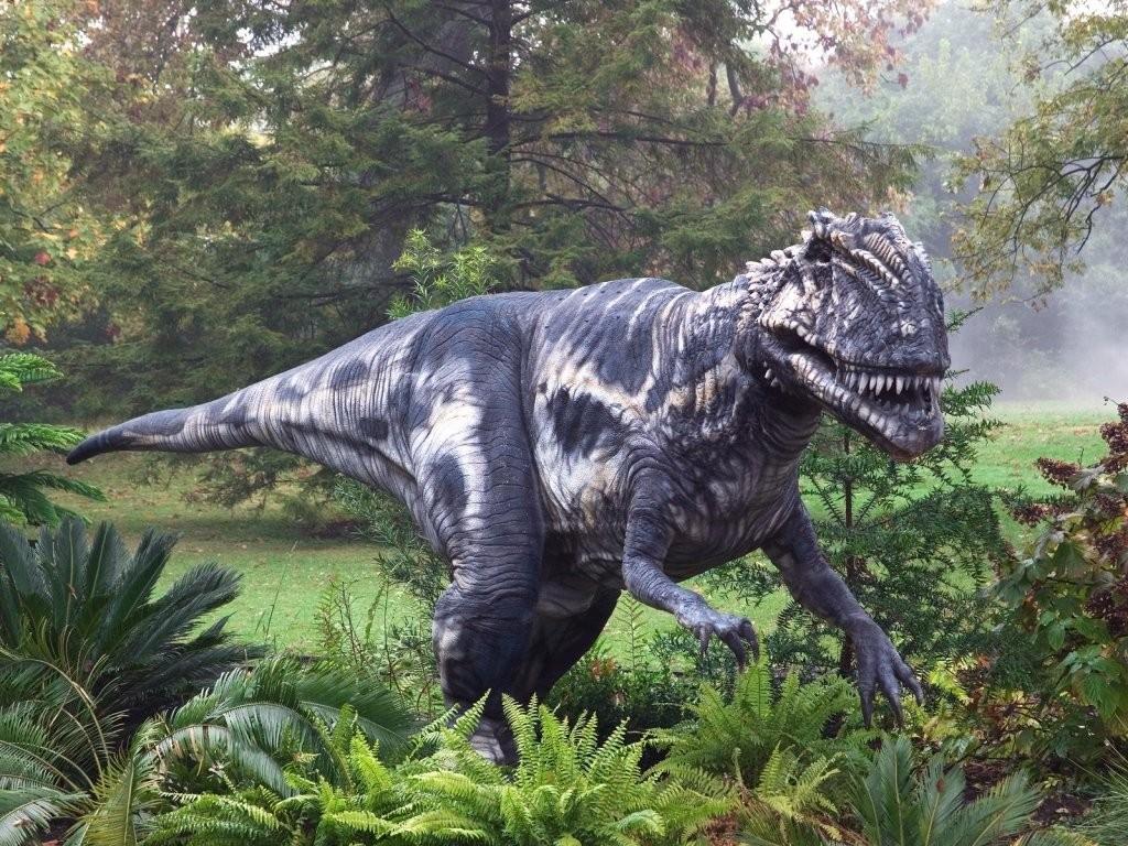 Ученые разгадали тайну зародышей динозавров