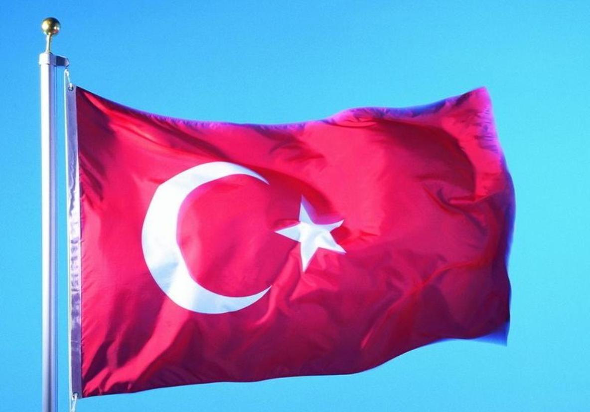 Эрдоган сократил 6 тыс. турецких госслужащих
