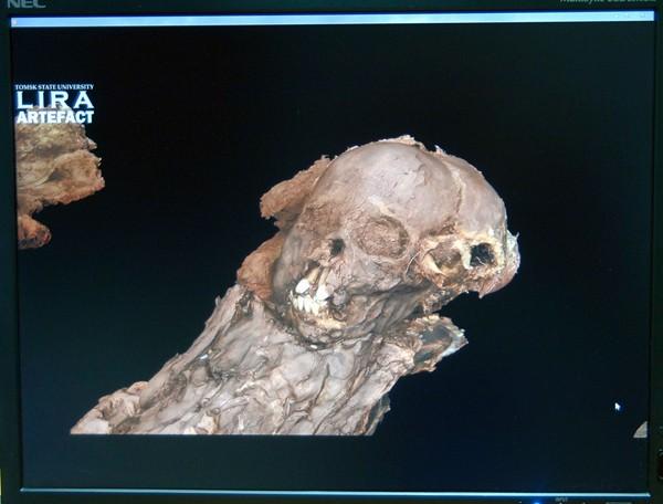 Ученые ТГУ завершили оцифровку мумии ребенка, жившего вXIII веке
