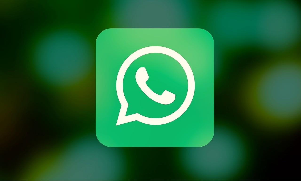 Вбета-версии WhatsApp возникла возможность поиска гифок