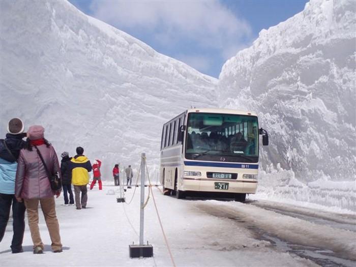 ВЯпонии, из-за снегопада, отменено неменее 60 рейсов
