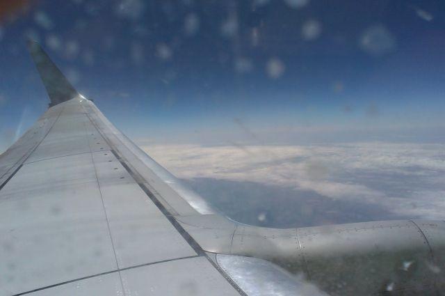 Летевший вПермь самолет вернулся воВнуково из-за трещины встекле