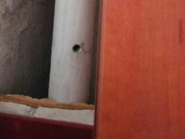 ВКрасном Селе эвакуировали граждан дома из-за угрозы взрыва
