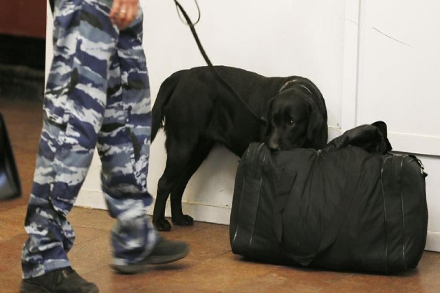 «Европолис» довелось эвакуировать из-за бесхозной сумочки