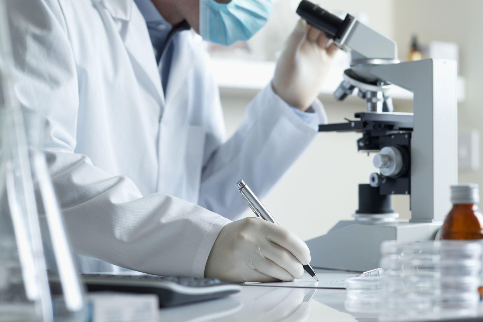 Американские ученые хотят сделать сверхпрочную броню изволос
