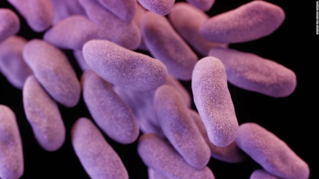 Учёные научились снижать сопротивляемость бактерий кантибиотикам