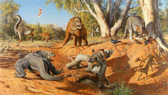 Кисчезновению огромных животных причастен человек— Ученые