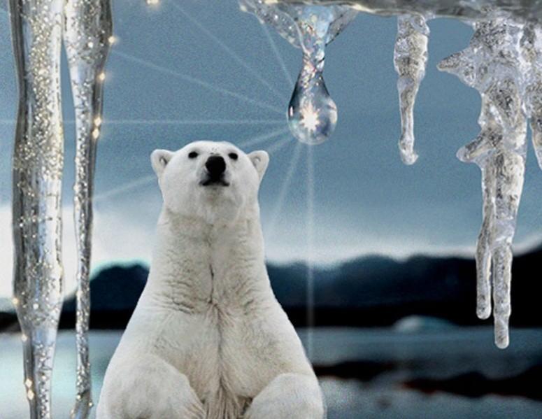 Катастрофы связаны сглобальным потеплением— ученые