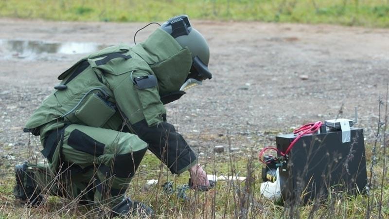 ВШвеции влагере для беженцев отыскали бомбу