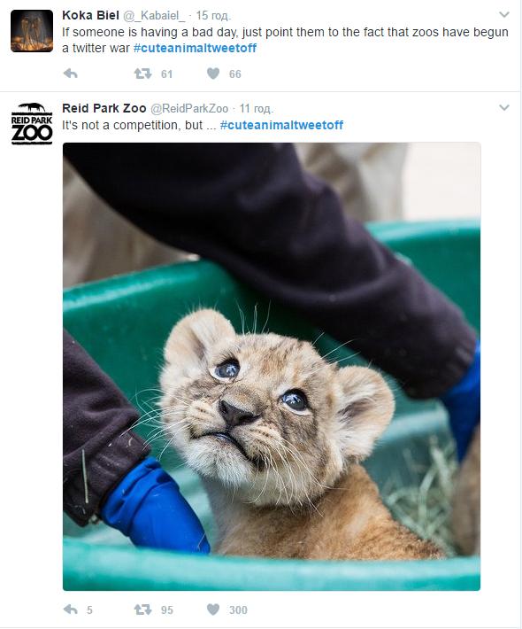 Кфлешмобу «милоты» присоединился новосибирский зоопарк