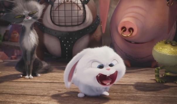 Названа дата премьеры мультфильма «Тайной жизни домашних животных-2»