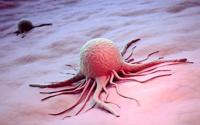 Ученые узнали, почему раковые клетки начинают «гулять» поорганизму