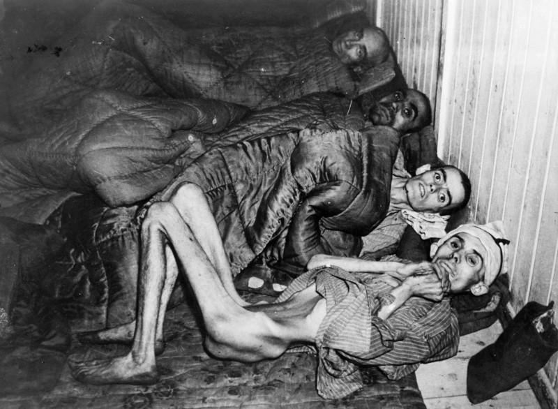 ВПольше афишировали имена 8500 надзирателей концлагеря Освенцим