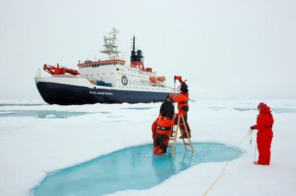 Эксперты: Необходимо сократить темпы исследований и персонал в Антарктике