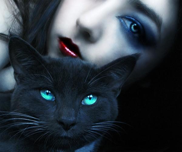 Ученые: Кошки способствуют развитию ПМС у женщин