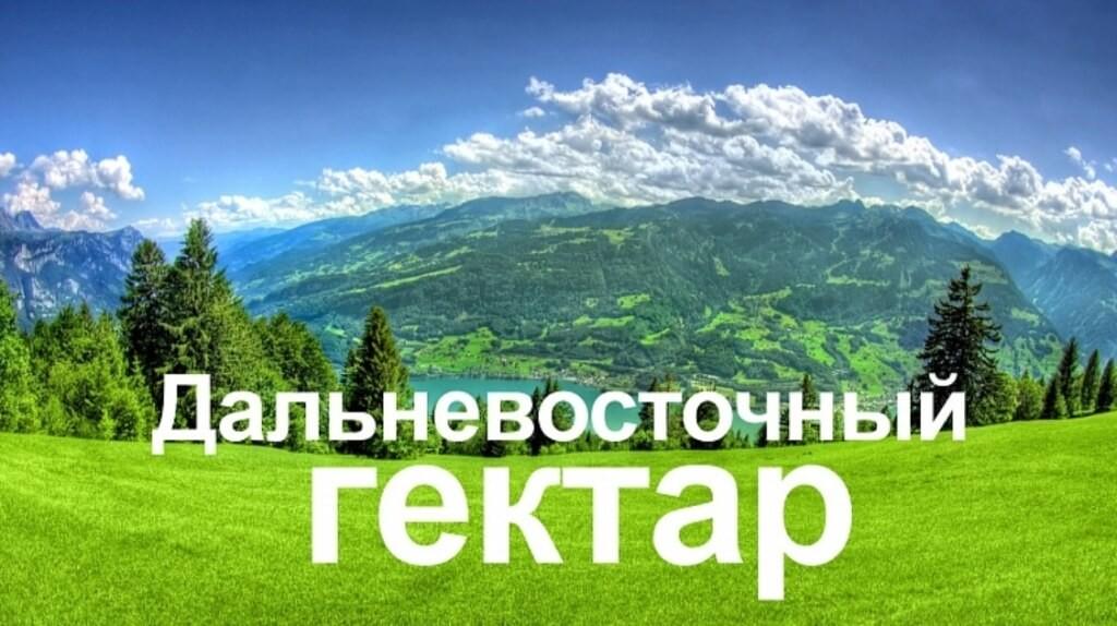 С1февраля каждый житель россии получит право на«дальневосточный гектар»