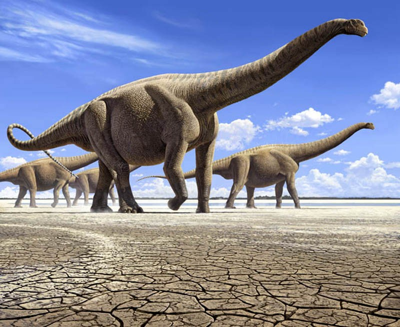 Ученые из Китайская республика обнаружили белок возрастом неменее 195 млн лет