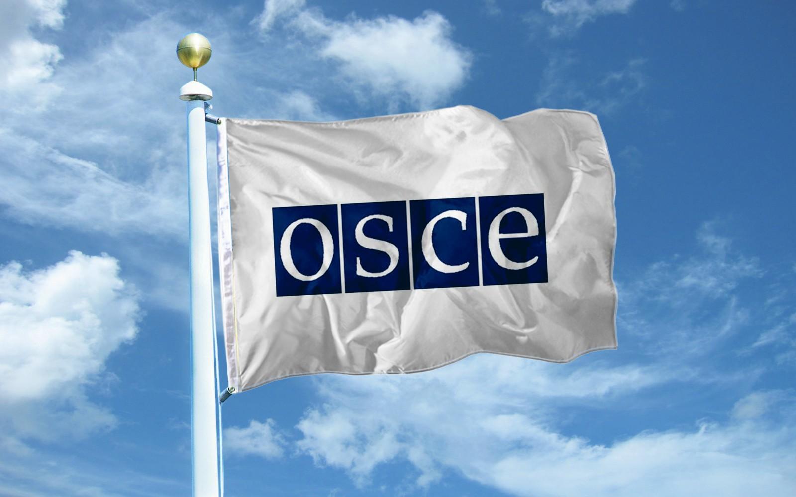 Руководитель ОБСЕ приедет вГрузию для общения сбеженцами изАбхазии
