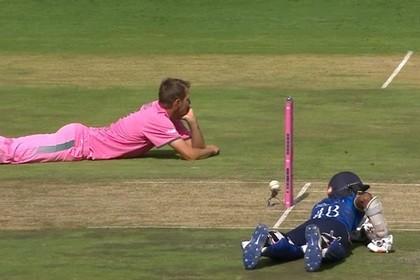Рой пчел атаковал игроков начемпионате мира покрикету