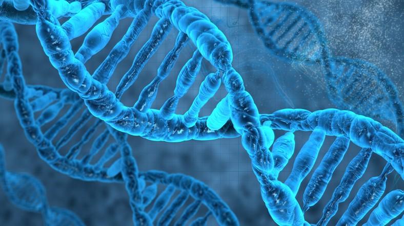 ДНК-загадка: Лейкемию можно получить по наследию, однако есть лечение