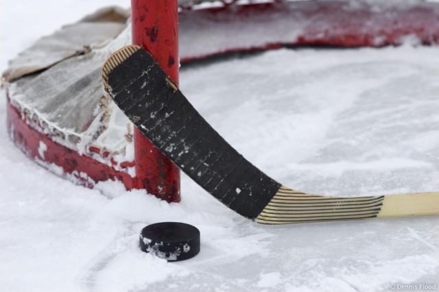 Шведский хоккеист ударил противника полицу клюшкой